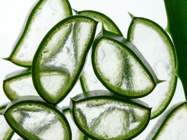 awesome aloe vera uses